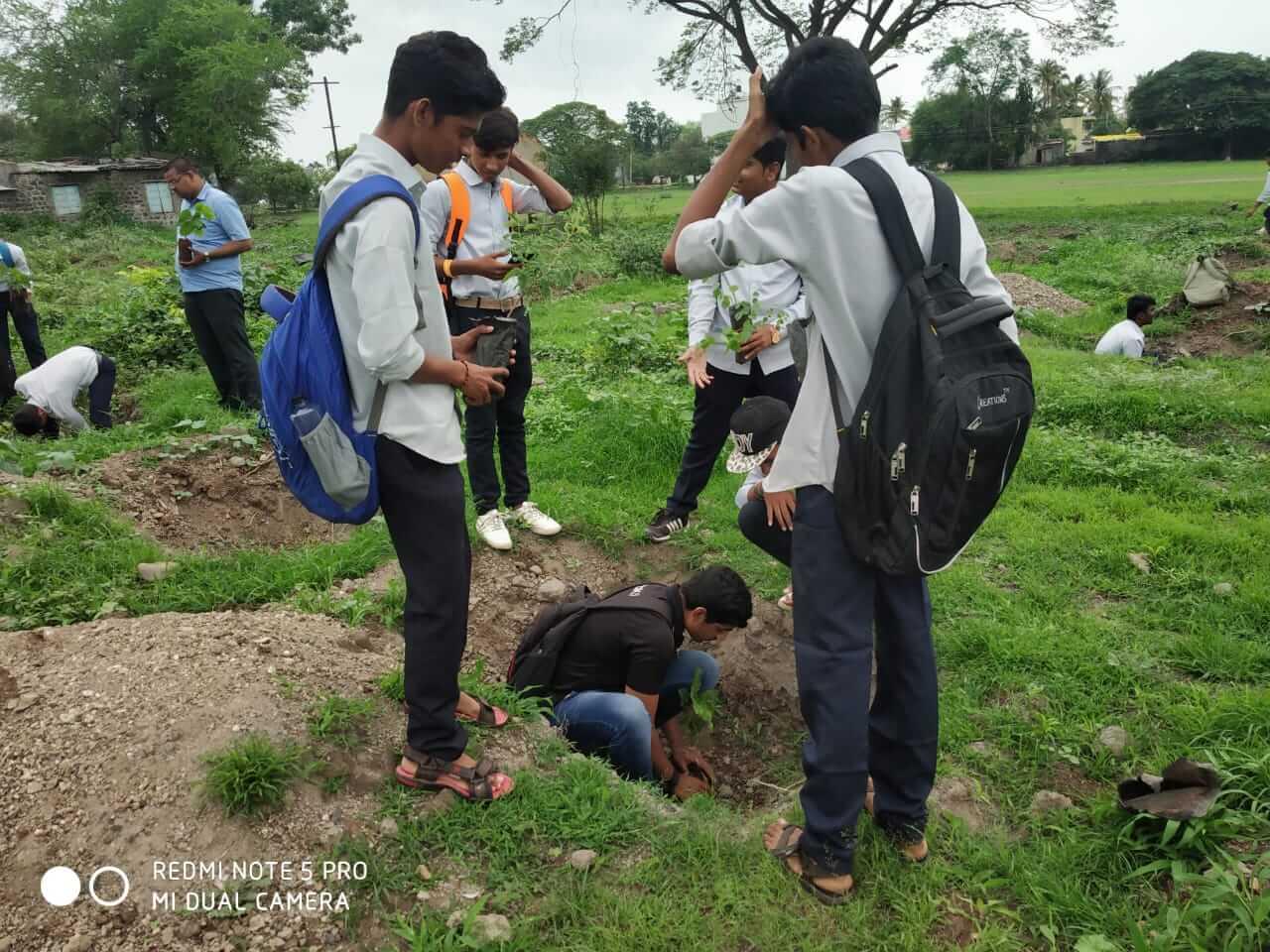 treeplant (4)